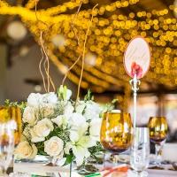 Dave & Liza Photography Leopard Lodge Wedding DN-1001-4.jpg