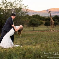 Dave & Liza Photography Leopard Lodge Wedding DN-5001-7.jpg