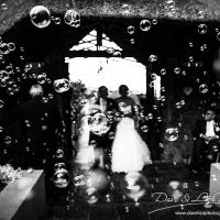 Leopard Lodge wedding Dave Liza Photography - DJ-4010.jpg