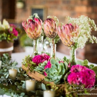 Dinokeng Wedding Dave Liza Photography-1000-4