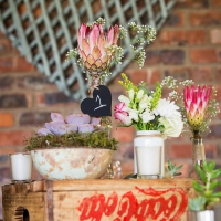 Dinokeng Wedding Dave Liza Photography-1001