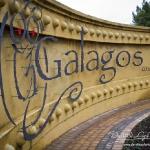 dave-liza-wedding-photography-galagos-2