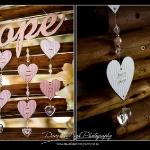dave-liza-photography-leoprad-lodge-wedding4