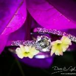 muldersdrift-wedding-dave-and-liza-photography-1001