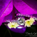 muldersdrift-wedding-dave-and-liza-photography-1001